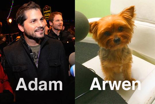 AdamArwen